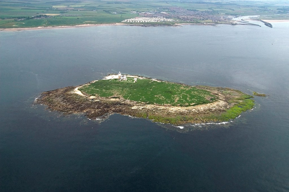 Coquet Island RSPB reserve David Wootton rspb images